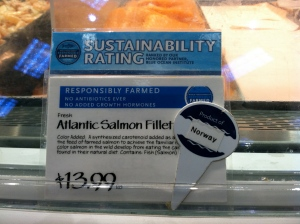 Salmon Sustainability